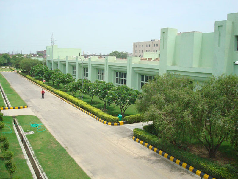 plant-location-noida-mclssd